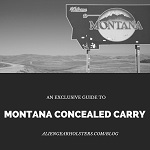 montana state concealed carry