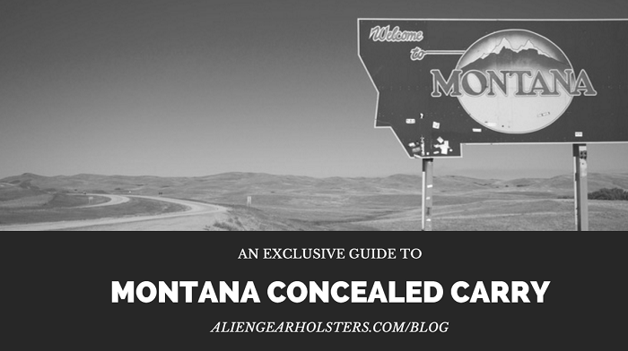 montana concealed carry guide