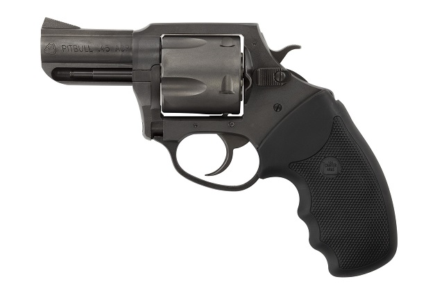 the charter arms pitbull in .45 caliber