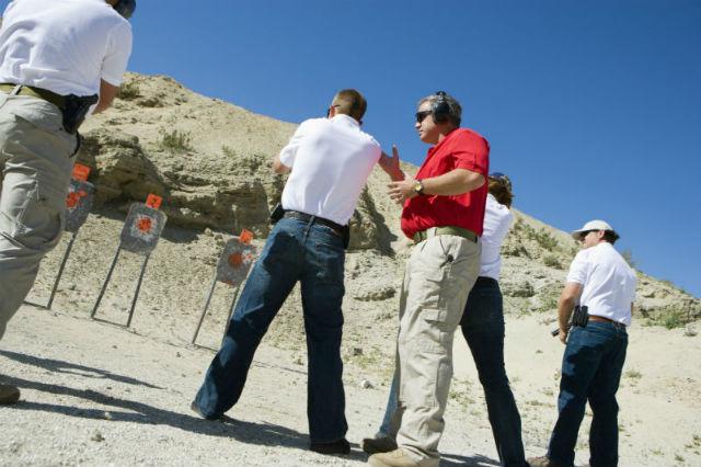 gun grip holster                 access