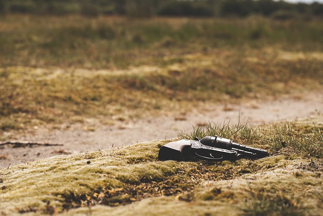 what to do when your ccw is lost